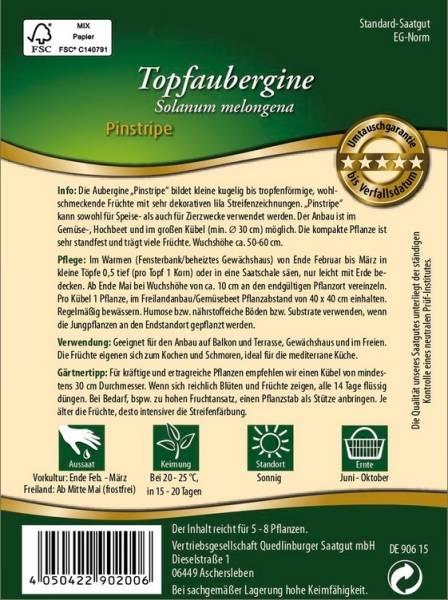 Topfaubergine Pinstripe / Solanum melongena
