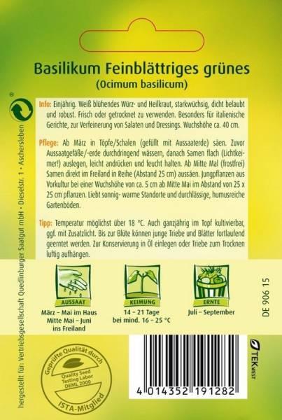 Basilikum grün feinblättriges