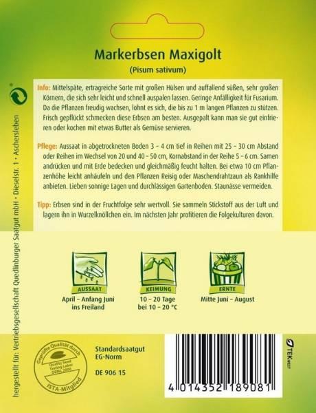 Markerbsen Maxigolt