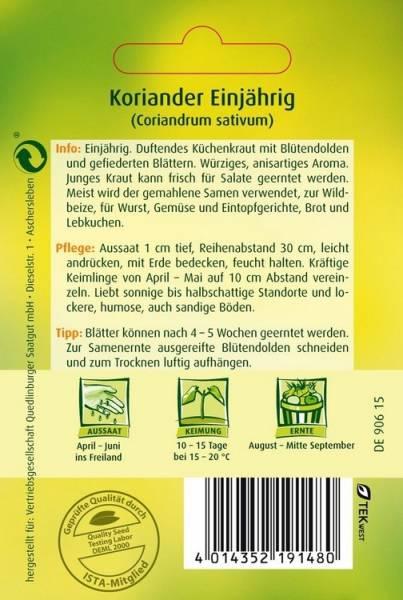 Koriander Thüringer