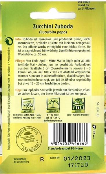 Zucchini Zuboda / Cucurbita pepo