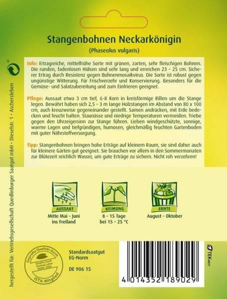 Stangenbohnen Neckarkönigin
